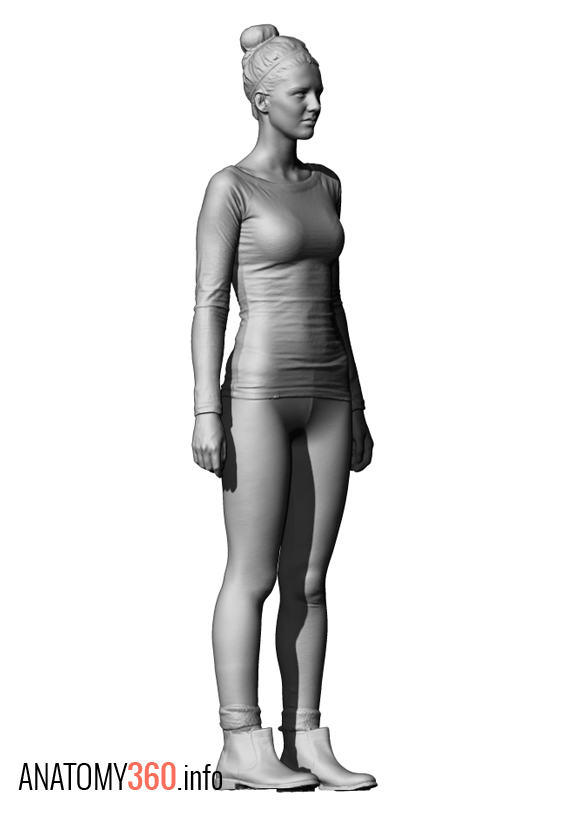Anatomy check please - Art Critique - Forums - Cubebrush